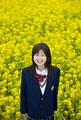 タイトル:女子高生ポートレート