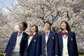タイトル:桜と高校生
