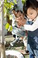 タイトル:水遣りをする女の子