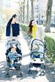 タイトル:ベビーカーを押すふたりの母親