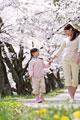 タイトル:桜の下を歩く母親と女の子