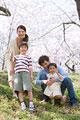 タイトル:桜の下で笑顔の家族