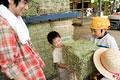 タイトル:干し草を抱える家族