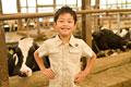 タイトル:牛の前に立つ男の子