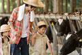 タイトル:牛を見ている家族