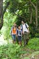 タイトル:森を歩く親子