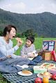 タイトル:草原でピクニックをする父と息子