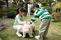 タイトル:犬と遊ぶ子供たち
