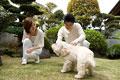 タイトル:犬と遊ぶ男女