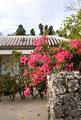 タイトル:竹富島の民家