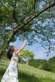 タイトル:木の枝をつかもうとする少女
