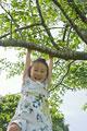 タイトル:木にぶら下がる少女
