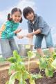 タイトル:畑で作物に水をやる男の子と女の子