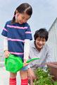 タイトル:ベランダで植物に水を遣る父と子