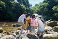 タイトル:渓流に立つ家族4人の後姿