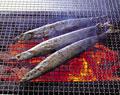 タイトル:サンマ網焼き