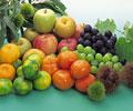 タイトル:果物と木の実