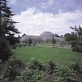 タイトル:王立植物園