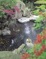 タイトル:露天風呂と桶