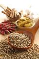 タイトル:赤唐辛子と白胡椒とウコンとシナモンとニンニク