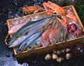 タイトル:魚介類集合 (毛ガ二・ズワイガニ・クルマエビ・タコ・タイ・ブリ・サバ)