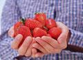 タイトル:山盛りのイチゴを持つ女性の手