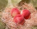 タイトル:3個の桃