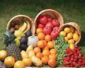 タイトル:果物の集合