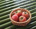 タイトル:4個のトマト