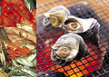 タイトル:海産物のイメージ・コラージュ