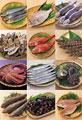 タイトル:鮮魚の集合イメージ・コラージュ