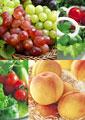 タイトル:果物のイメージ・コラージュ