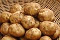 タイトル:ジャガイモ(男爵薯)