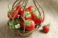 タイトル:かごに盛られたイチゴ(アスカルビー)