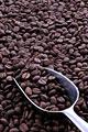 タイトル:コーヒー豆とスクープ