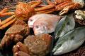 タイトル:冬の魚介集合