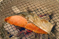 タイトル:焼き鮭