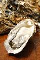 タイトル:殻付き牡蠣