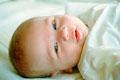 タイトル:Portrait of a baby