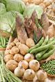 タイトル:春の野菜集合