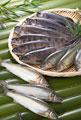 タイトル:川魚