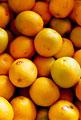 タイトル:オレンジ