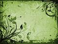 タイトル:植物