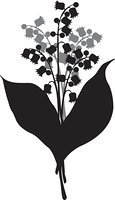 Lily of the valley, vector