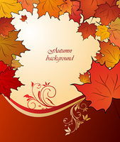 Illustration of autumn floral background. Vector