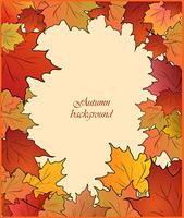 Autumn cute card with maple. Vector