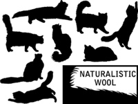 Set of detailed cat's silhouettes