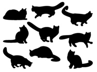 A lot of silhouettes of cats