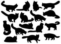 Big set of cat's silhouettes