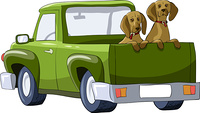 Dogs in the back of a pickup, vector illustration